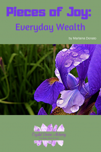 Pieces of Joy_ Everyday Wealth by Marlaina Donato