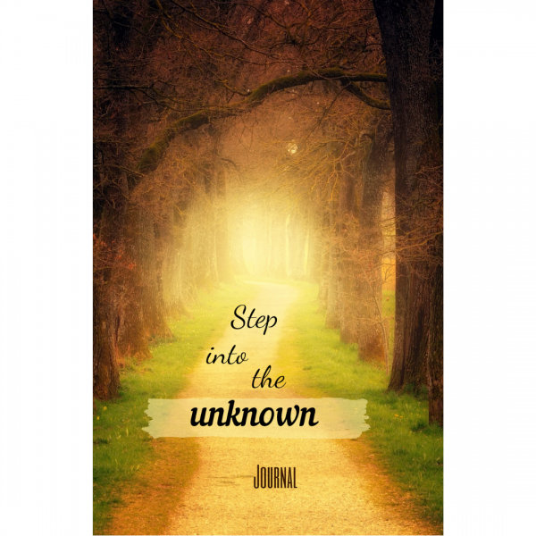 Step into the unknown Journal paper