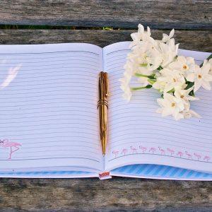 Prompt Journals