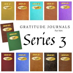 Gratitude Journals Series 3